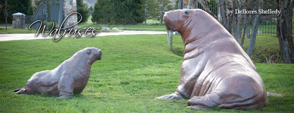 Walrus & Calf